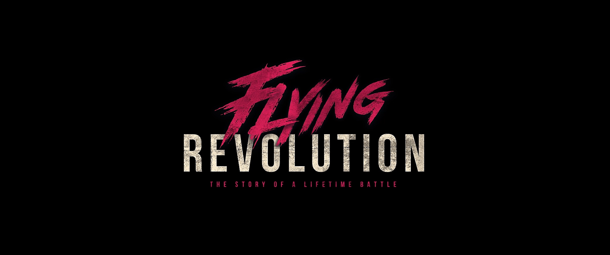Flying Revolution